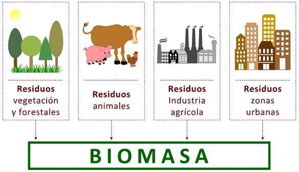 Energía de BIOMASA: ¿Qué es? Cómo se produce y cuales sus ventajas