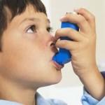 contaminación ambiental y el asma