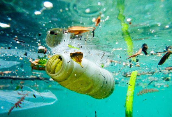 contaminación marina por plásticos arrojados al mar