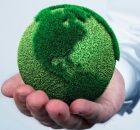 importancia de la ecología
