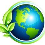ecologia .... Qué es?
