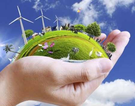 medio ambiente definición grafica