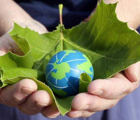 frases sobre el medio ambiente